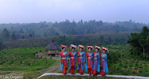Simalungun Dancers